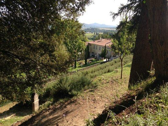Le Couvent des Minimes Hotel et SPA L'Occitane : Vue depuis les jardins. (Chemin de croix)