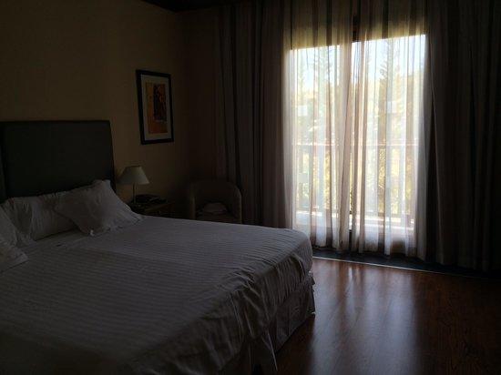 Hotel Real Golf & Spa Badaguás Jaca : Habitación