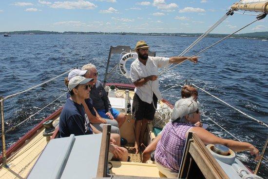 Bufflehead Sailing Charters: Sailing