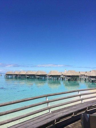 Sofitel Moorea Ia Ora Beach Resort : Vista sugli overwater