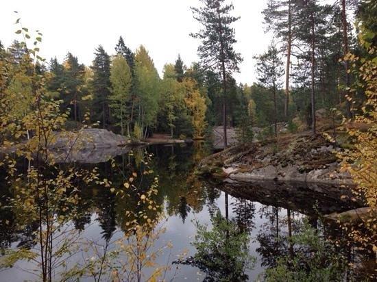 Hotel Korpilampi: озеро