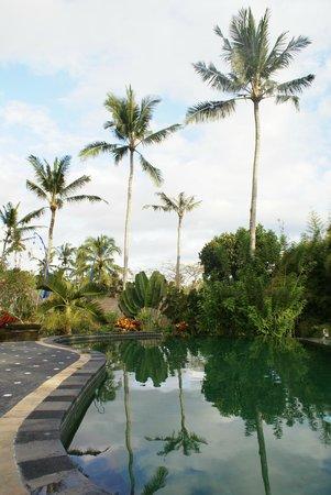Tanah Merah Art Resort: Lekker zwembad
