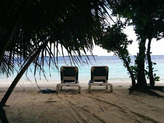 Vilamendhoo Island Resort & Spa : вид из номера на персональные лежиаки