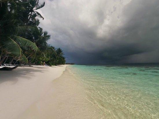 Vilamendhoo Island Resort & Spa : Пляж номеров выше 184