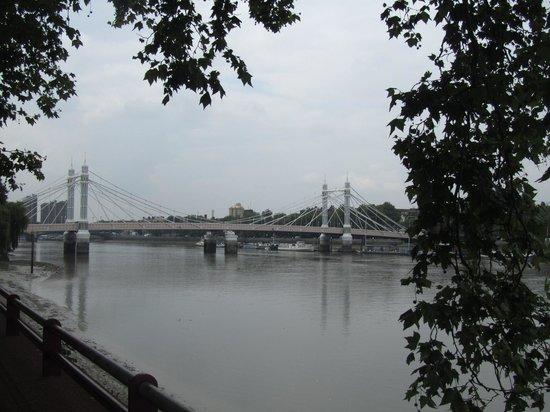 Albert Bridge from Battersea Park