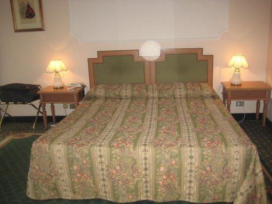 Hotel Berchielli: kamer 203