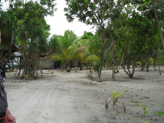 Pom Pom Island Resort & Spa : Giardino
