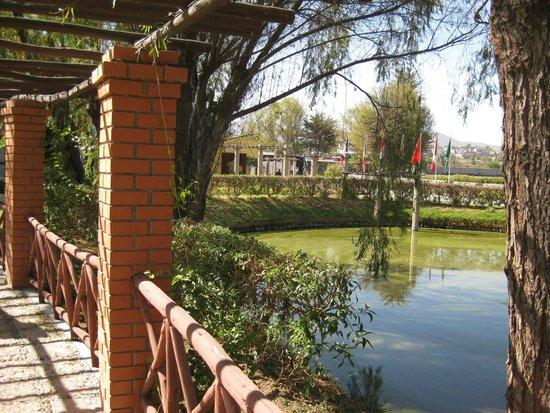 Hotel El Lago Estelar: Lago