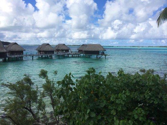 Sofitel Bora Bora Private Island : Vista dalla camera