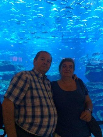 Dubai Aquarium & Underwater Zoo: Mis padres disfrutando el acuario