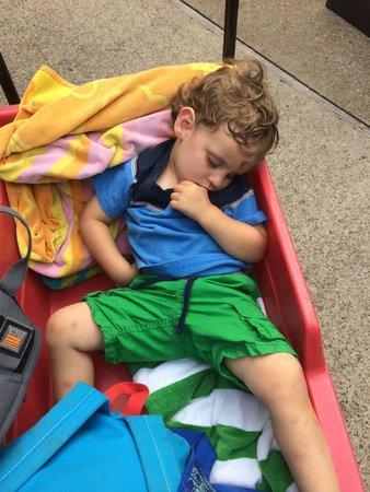 Holiday World & Splashin' Safari : ..and which doubles as a bed...