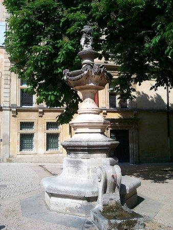 Histoires et Petites Histoires de Saint Rémy de Provence