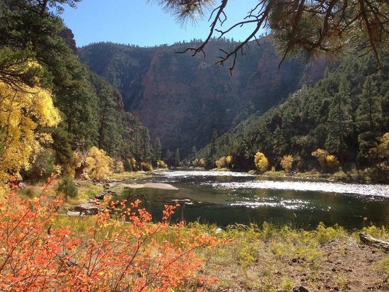 Dutch John, UT: Beautiful fall scenery on the Green River in Utah!