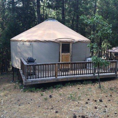 Yosemite Lakes RV Resort : Hillside Yurt