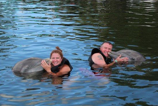 Dolphins Plus Bayside: Dolphin Cove Key Largo août 2014