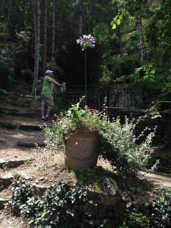 une des statues dans le jardin d 39 eden picture of le