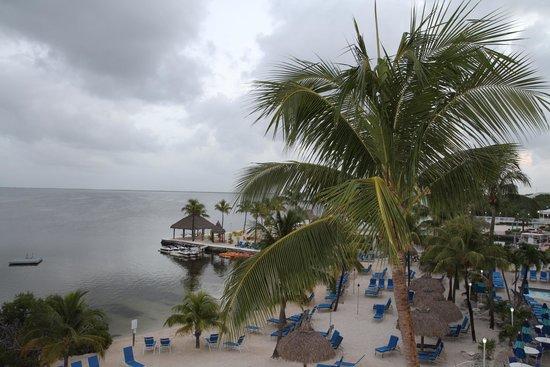 Key Largo Bay Marriott Beach Resort : View from the room