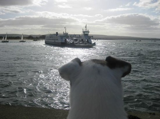 Sunburst : Ritchie waits for the ferry