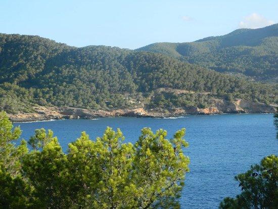 Club Vista Bahia: Balcony view