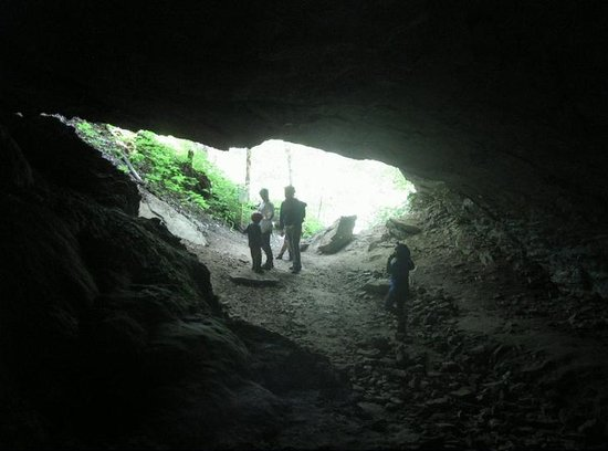 River and Earth Adventures, Inc : Cave mouth