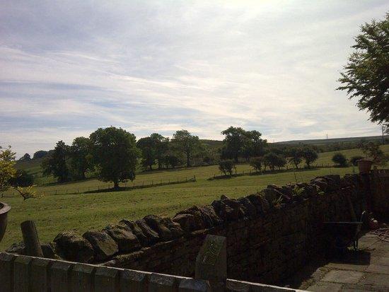 Bush Nook: Surrounding property view