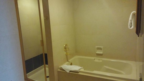 Shower bath picture of luxor las vegas las vegas for Luxor baths