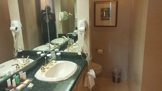 Luxor Las Vegas : Sink/Toilet