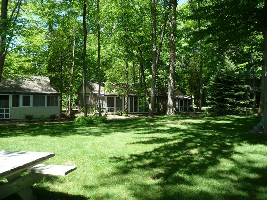 White Birch Lodge: Rustic cottages, ours in the middle, two rooms with a shared poarch.