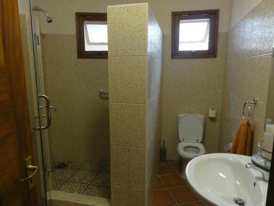 Tarangire Sopa Lodge: The bathroom