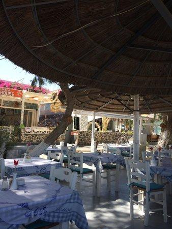 Boathouse Taverna : Taverna Boathouse