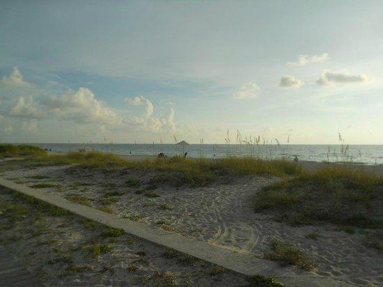 Belleair Beach Resort : View from property patio.