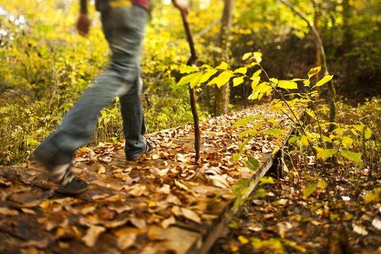 Williamsburg KOA Campground: Walk through our hallways