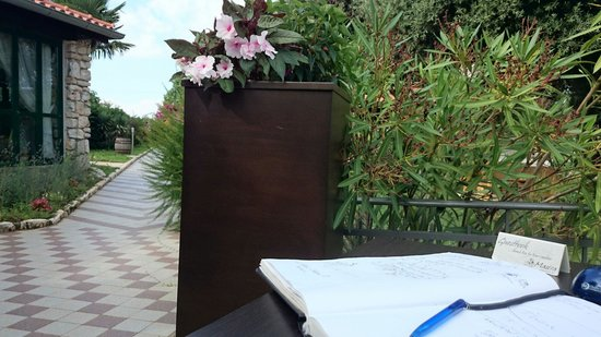 Masera: Guestbook detail @Masèra