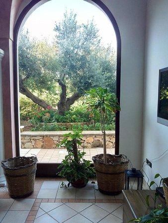 Hotel Montecallini: Vista del giardino
