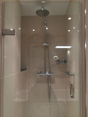 Royal Garden Hotel : Shower stall