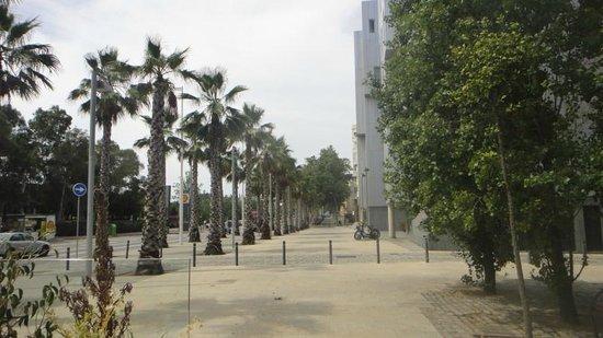 Lugaris Beach: View