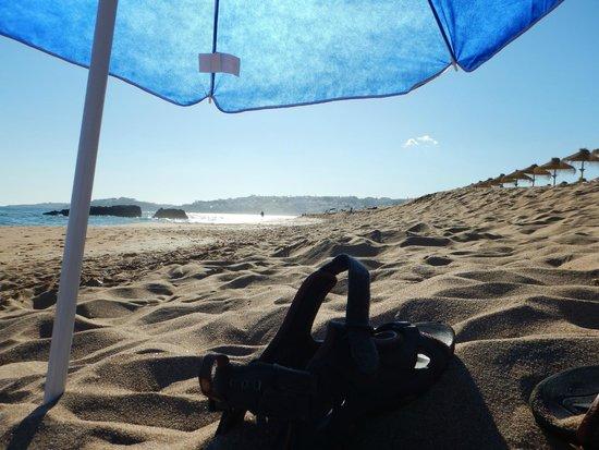 Auramar Beach Resort : Beach
