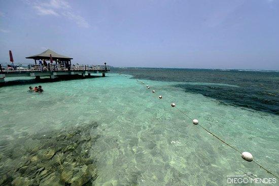 Decameron Los Delfines : Vista do restaurante
