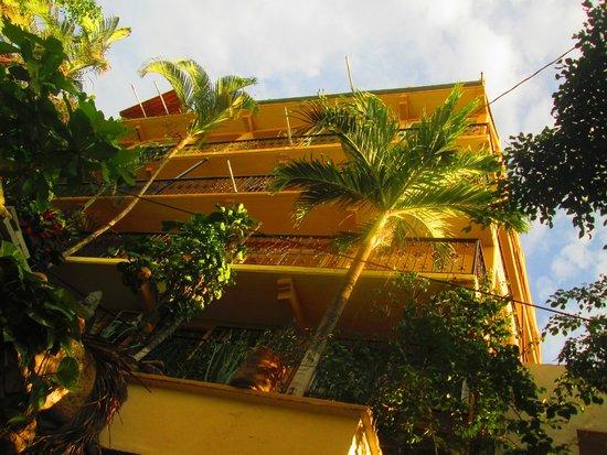 Hostal Vallarta Suites: Ingreso
