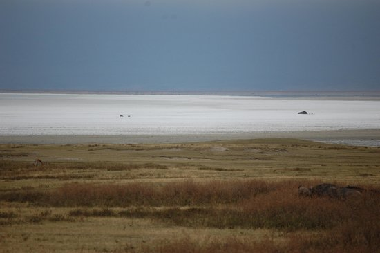 Ngorongoro Crater: From a distance