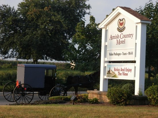 Amish Country Motel : Sit out on the lawn and watch the buggies go by!