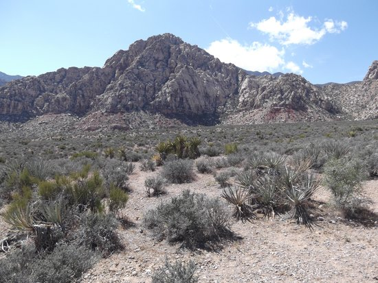 Red Rock Canyon National Conservation Area: 1