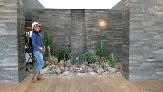 Sonesta Hotel Cusco: una fotito