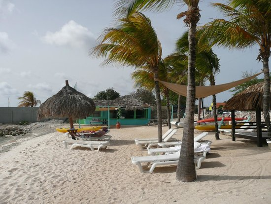 Plaza Resort Bonaire: Strandgedeelte bij activity center...