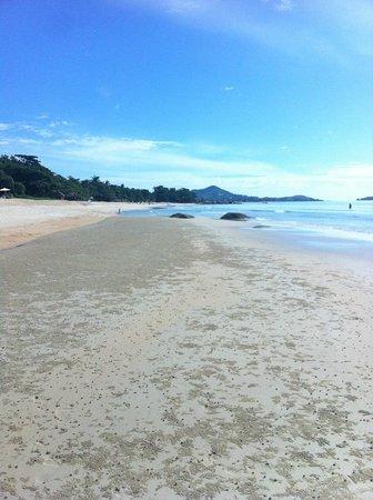 Fair House Beach Resort & Hotel : пляж