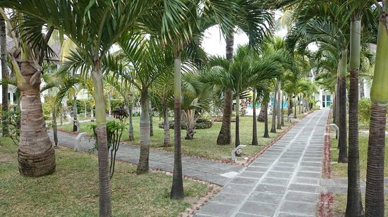 Veranda Palmar Beach: View of grounds.