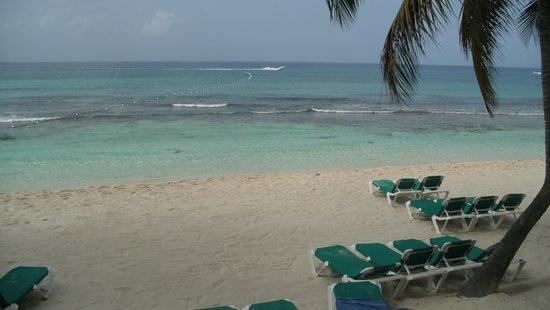 Viva Wyndham Dominicus Beach: la playa un sueño!