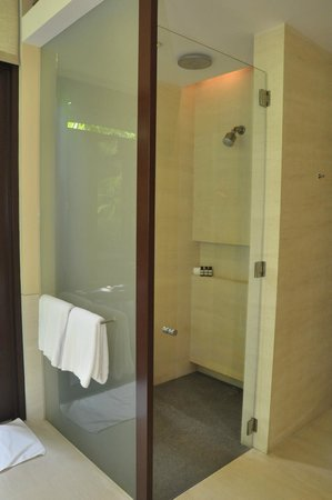 Capella Singapore: Rain Shower