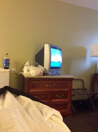 Americas Best Value Inn Hayward: basic TV