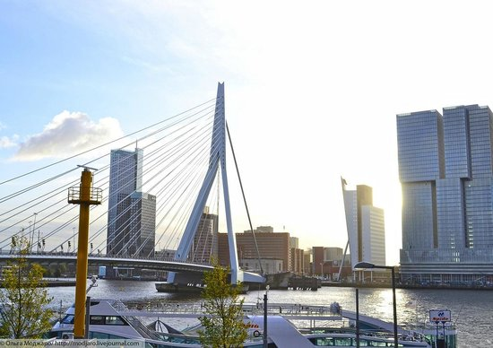 Thon Hotel Rotterdam: Вид из номера утром
